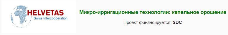 заголовок_рус